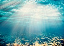 THALAMAG® puise sa force du magnésium marin issu des profondeurs de la mer d'Irlande